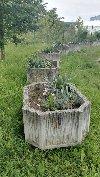 Květináče - betonové, starší  Obrázek